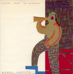 aztec camera winter front
