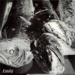 emily stumble front